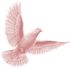 Dove Flying In The Sky Hand Drawn Engraving Sticker
