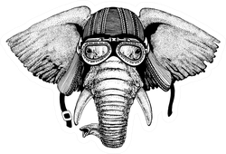 Elephant Wild Biker Animal Wearing Motorcycle Helmet Sticker