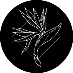 Exotic And Modern Bird Of Paradise Icon Sticker
