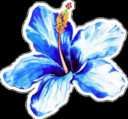 Exotic Blue Hibiscus Watercolor Sticker
