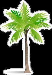 Exotic Palm Sticker