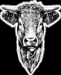Face Cow Sketch Art Sticker
