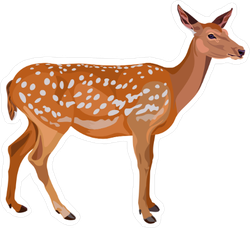 Female Red Deer Sticker