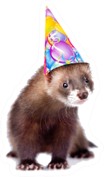 Ferret In Birthday Hat Looking At Camera Sticker