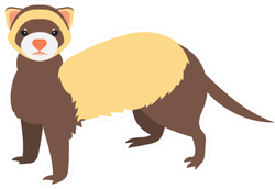 Flat Ferret Illustration Sticker