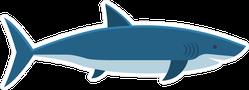 Flat Style Shark Sticker