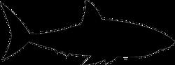 Floating Shark Silhouette Sticker
