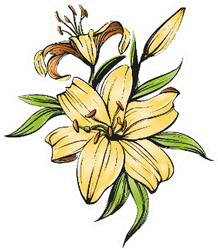 Floral Blooming Lilies Illustration Sketch Sticker