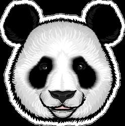 Fluffy Panda Face Sticker