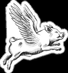 Flying Pig Sketch Sticker