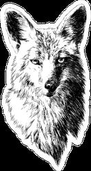 Fox Head Illustration Sticker