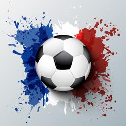France Flag Soccer Sticker