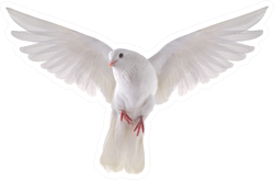 Free Flying White Dove Isolated On A White Background Sticker