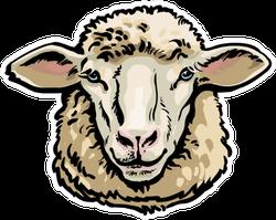 Front View Sketch Style Portrait Sheep Sticker