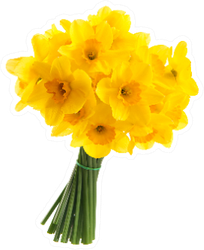 Full Bouquet Of Yellow Daffodils Sticker