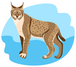 Full Length Spotted Bobcat Sticker