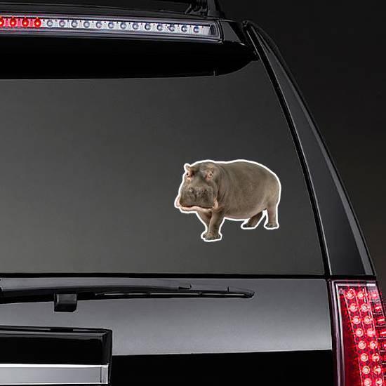 Hippopotamus Amphibius Sticker