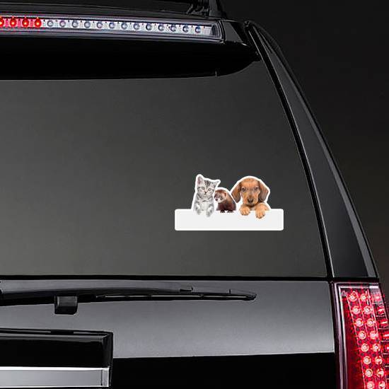 Cat, Dog And Ferret Over White Banner Sticker