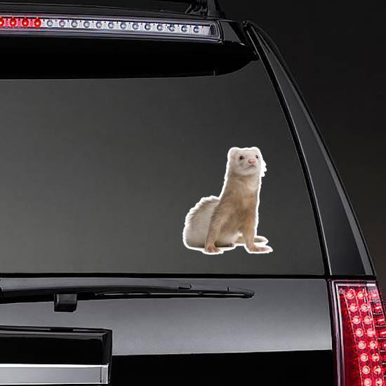 Light Colored Ferret Sitting Up Sticker