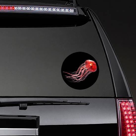 3d Rendering Of Pink Jellyfish Isolated On Black Sticker