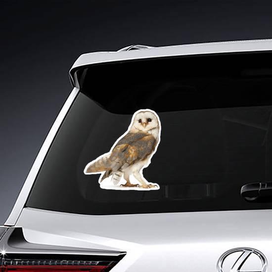 Barn Owl Sticker example