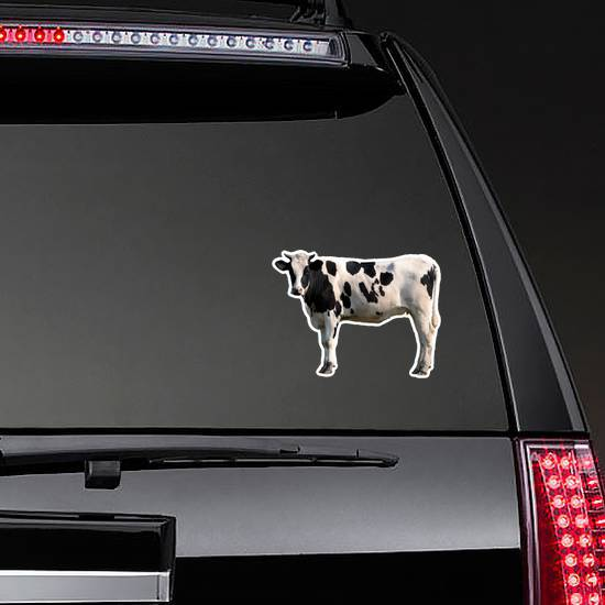 Black And White Cow Isolated Sticker