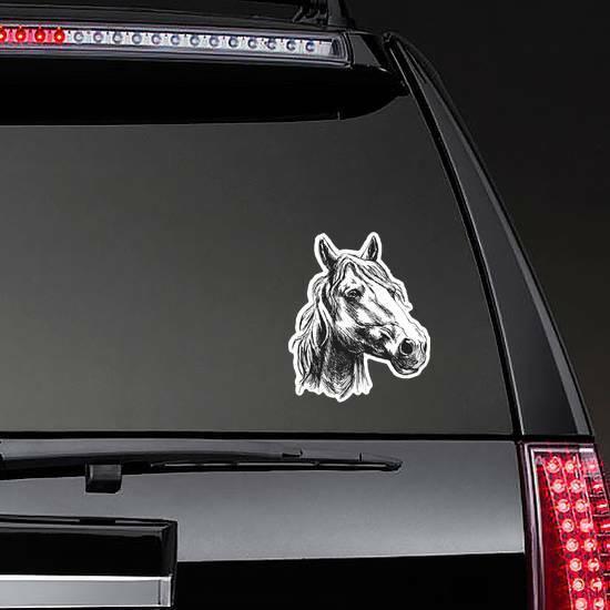 Horse Head Sketch Sticker on a Rear Car Window example