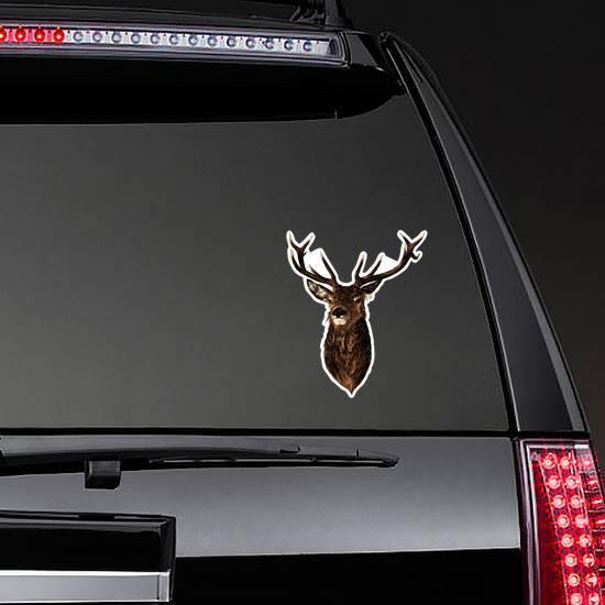 Deer Sketch Vector Graphics Color Head With Horns