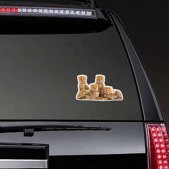 Cheetah Cubs Sitting Together Sticker
