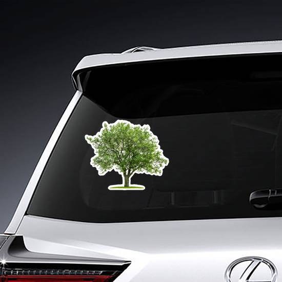 Deciduous Tree With Grass Sticker
