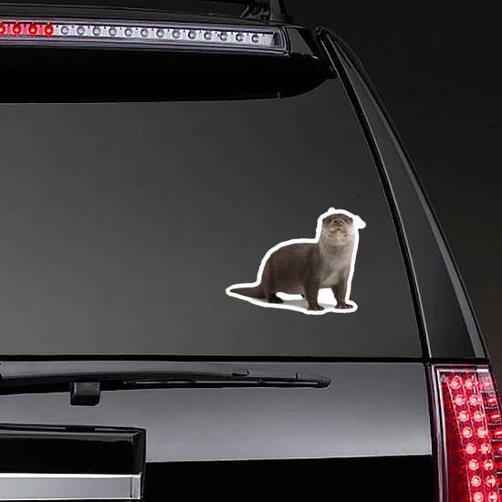 European Otter Portrait Standing Against White Sticker