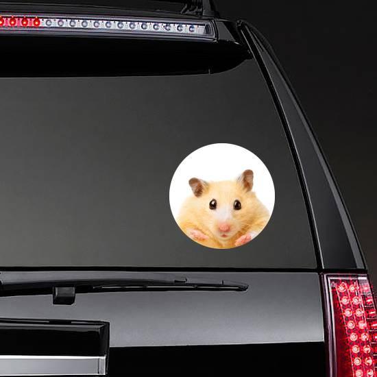Fat Funny Hamster Sticker
