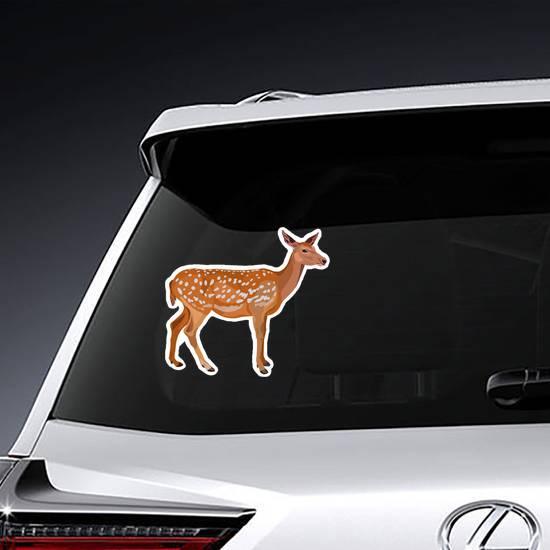 Female Red Deer Sticker