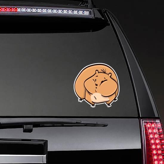 Hamster Cartoon Colorful Funny Animal Sticker