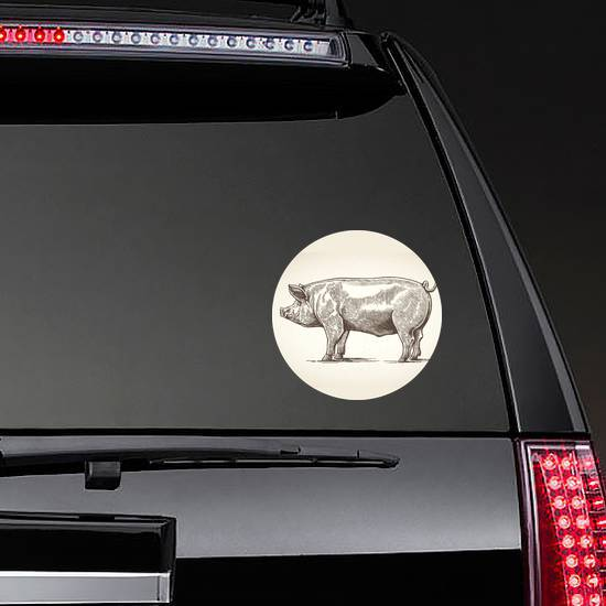 Illustration Of Pig In Graphic Style Sticker