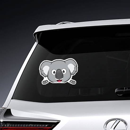 Koala Looking Over Edge Sticker