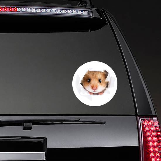 Little Hamster Looking Through Hole Sticker