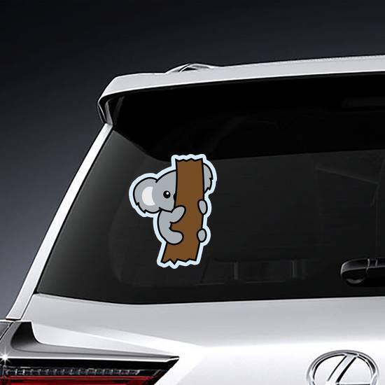 Shy Koala Sticker