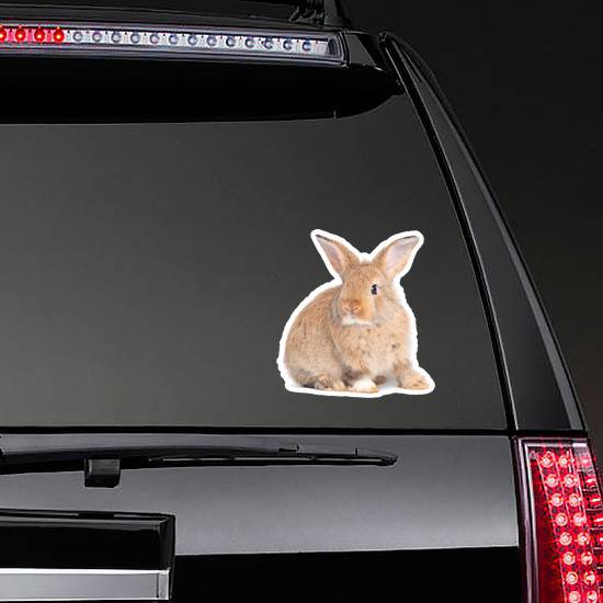 Side View Of Brown Cute Baby Rabbit Sticker