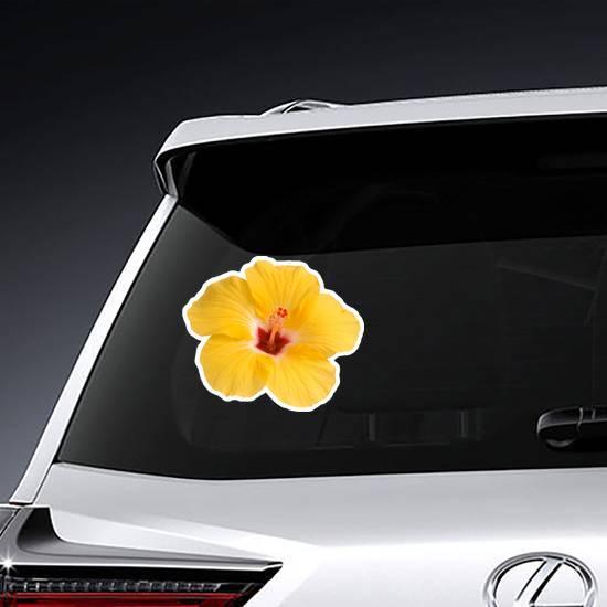 Single Yellow Hibiscus Photo Sticker example