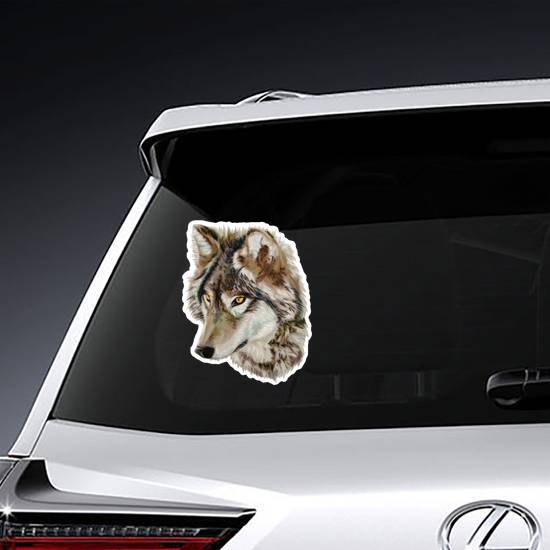 Staring Realistic Wolf Sticker