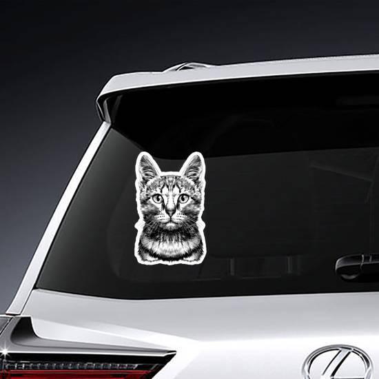Striped Cat Head Sketch Sticker
