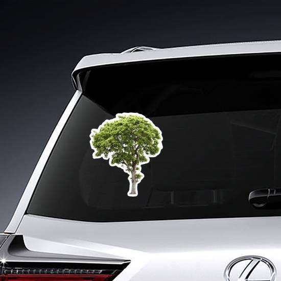 Tall Green Tree Sticker