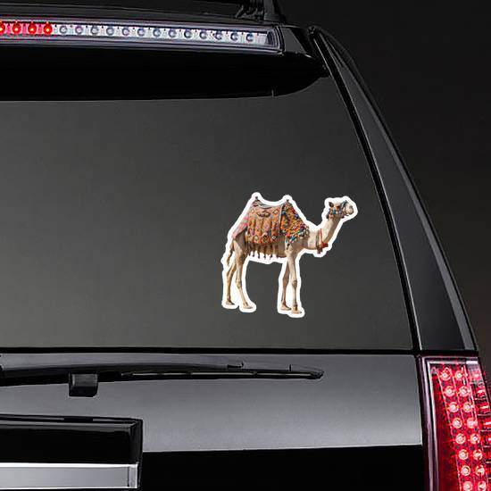 The Lonely Domestic Camel Isolated On White Sticker