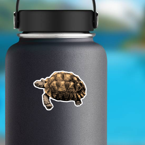 Turtle with Large Shell Sticker