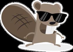 Funny Cartoon Beaver With Sunglasses Sticker