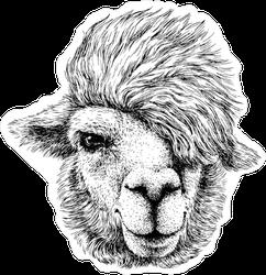 Funny Emo Llama Sticker