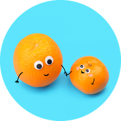 Funny Food Tangerines Couple Sticker