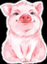 Funny Pig. Cute Watercolor Sticker