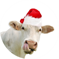 Funny Portrait Of Cow Wearing A Santa Hat Sticker